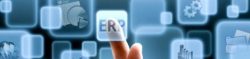 Top 5 Reasons Why an ERP Won't Work as a Cost Management Solution